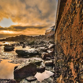 Against  the wall by Stephen Fouche - Nature Up Close Rock & Stone