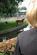 Foto: En liten vattengrav emellan oss...