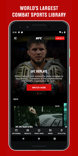UFC screenshot 3
