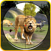 Jungle Hunting Game 2016