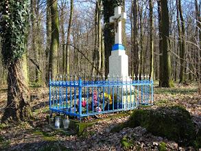 """Photo: Obszar Chronionego Krajobrazu """"Łęg Zdzieszowicki"""""""