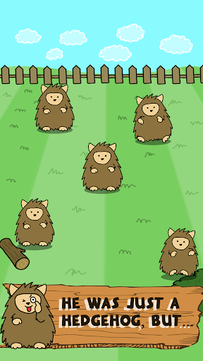 Hedgehog Evolution World