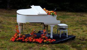 A white piano with flowers around it.