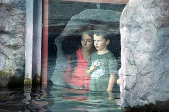 Photo: Bis zum Bauch im Wasser