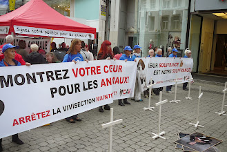Photo: Happening contre la vivisection à Liège. Organisateur : CAV