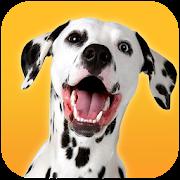 Dalmatian Dog Simulator