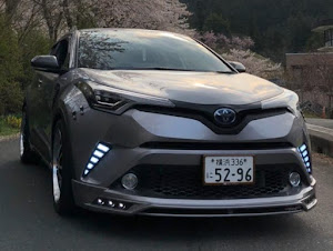 C-HR ZYX10 G LED limitedのカスタム事例画像 ちびさんの2020年04月08日19:29の投稿