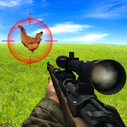 Bird Hunting Chicken Shooting Aim Wild Hen Hunt