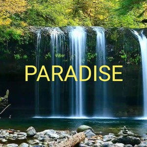 Paradise Upload Your Music Free