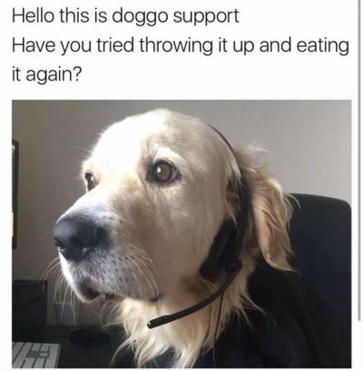 dog customer service meme
