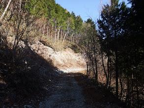 上部林道に合流