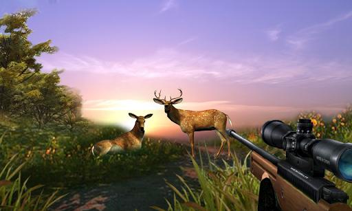 Hunt Deer In The Wild