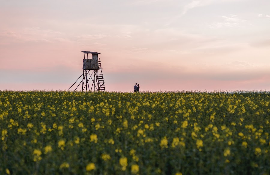 Hochzeitsfotograf Daniel Kempf-Seifried (kempfseifried). Foto vom 26.06.2014