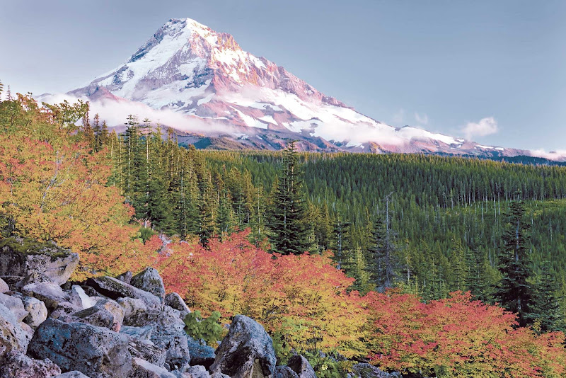 Enjoy breathtaking views of Mount Hood and colorful fall foliage during an American Cruise Lines river cruise.