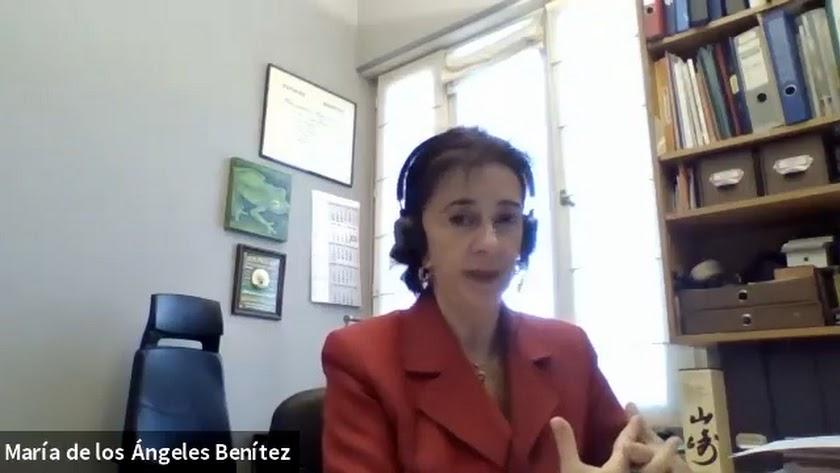 María de los Ángeles Benítez en su despacho durante la ponencia.