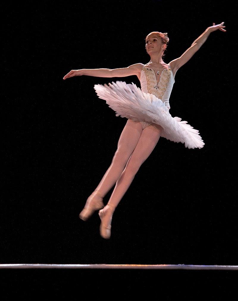 Jump...! di Francesca Malavasi