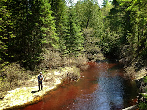 Photo: Miners River must be fully of tannic acid. This reddish color is truly stunning.