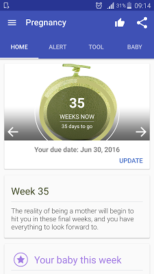 Pregnancy - 9 Months Pregnant - screenshot