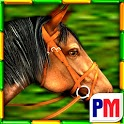 Gallop for Gold Slots icon