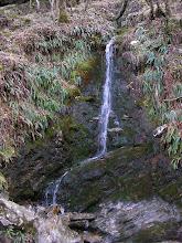 Photo: at Glendalough