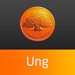 Swedbank ung Icon