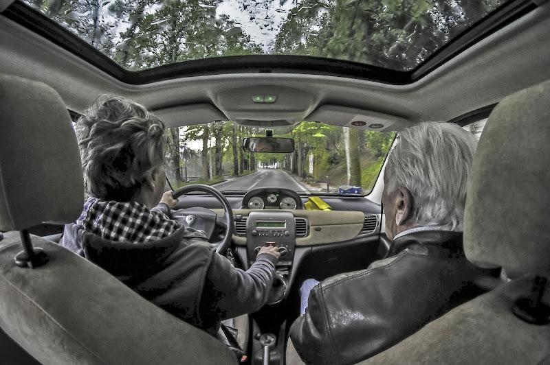 baubau..riconosco la strada per il parco!!! di Maurizio Valentini