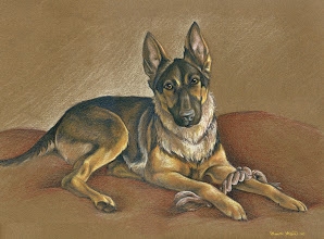 Photo: German Shepherd