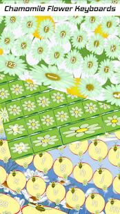 Heřmánek květinové klávesnice - náhled