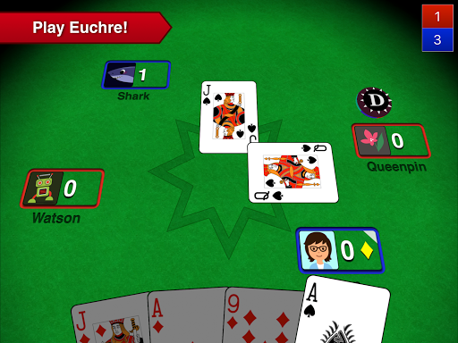 Euchre 3D 5.6 screenshots 6