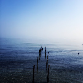 by Adela Rusu - Nature Up Close Water