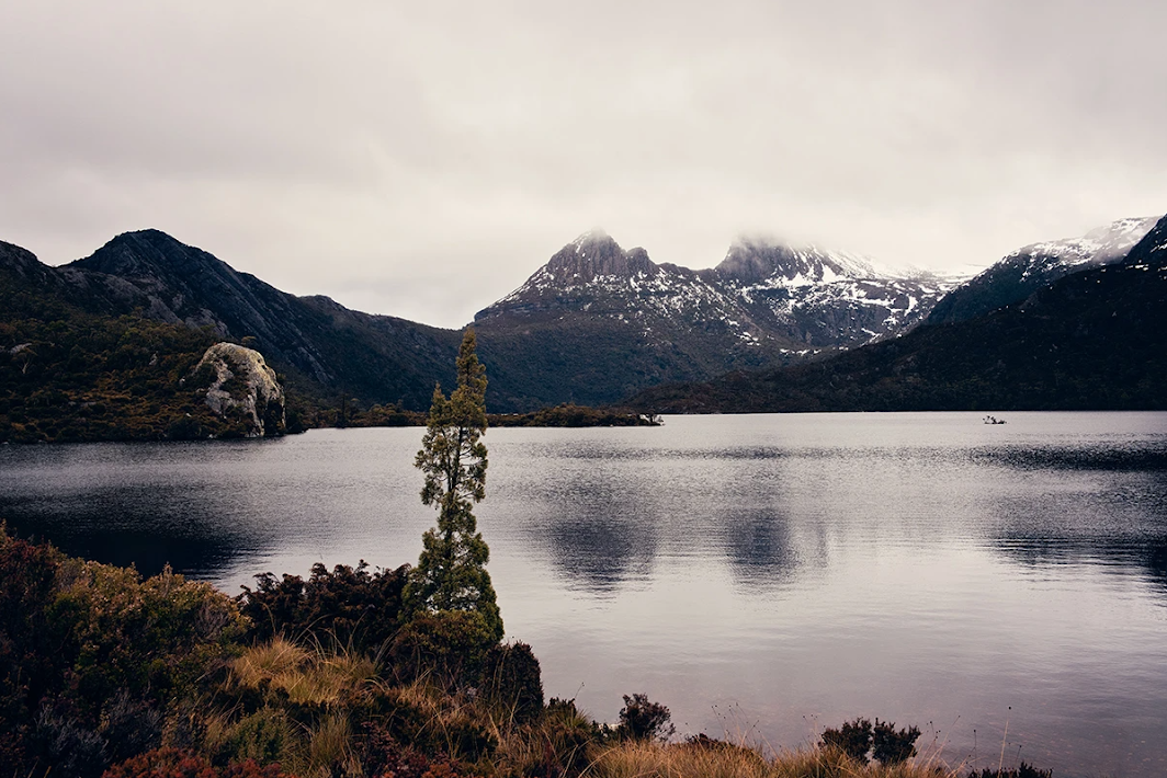 Dove Lake by Millie B.