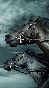 App Horse Pictures Live Wallpaper APK for Windows Phone
