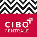 Centrale icon
