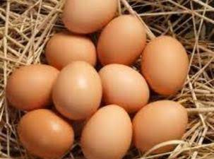 More Facts On Eggs