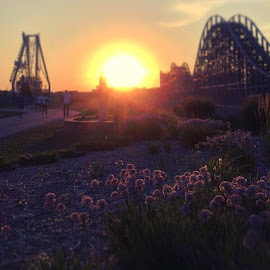 Beautiful sunset by Jessica Eirich - Uncategorized All Uncategorized