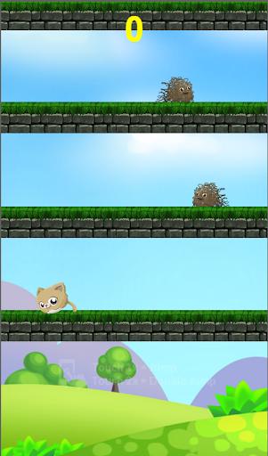 Kitty Jumping - Jumping Runing