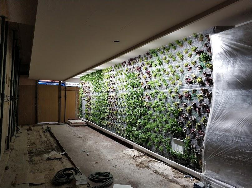 estado del jardín vertical a día 21 d enero