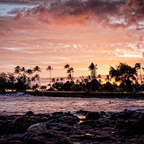 Kauai Sunset  by Chris Pugh - Landscapes Sunsets & Sunrises ( palm, kauai, sunset, ocean, beach, hawaii )