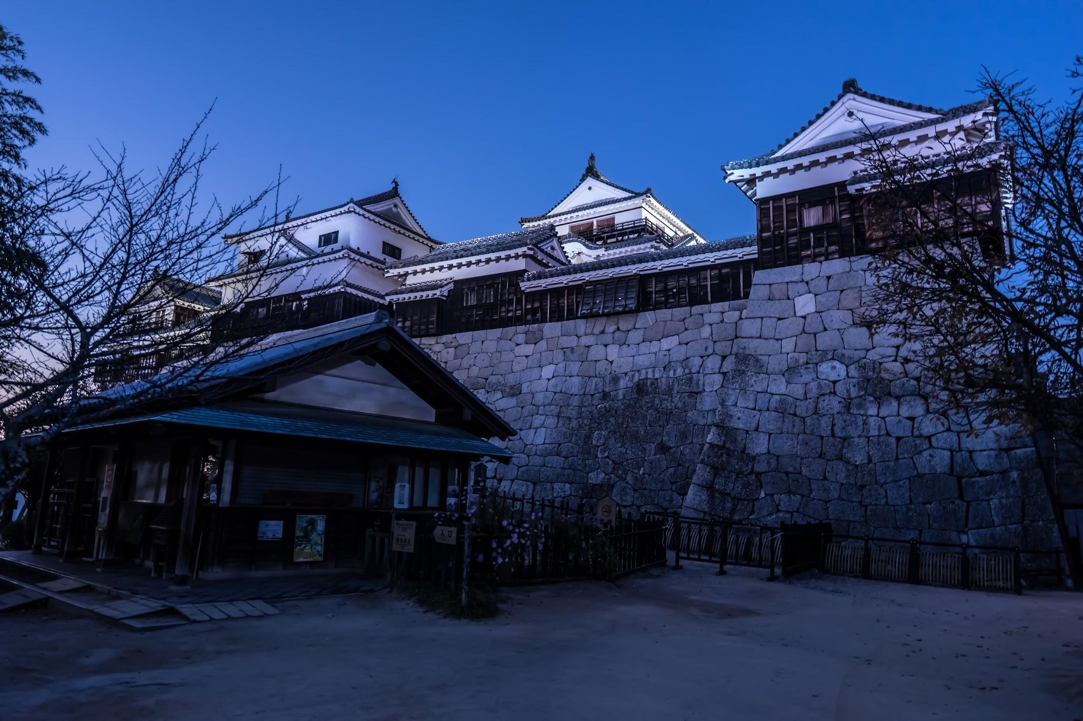 松山城 夜景2