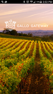 Gallo Gateway 2.0 - náhled