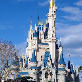 Cinderella's Castle by Joe Spandrusyszyn - Travel Locations Landmarks ( walt disney world, cinderella's castle, pwclandmarks, disney world, magic kingdom, castle, disney, cinderella,  )