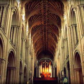 Norwich cathedral by Cristiana Chivarria - Buildings & Architecture Places of Worship ( norwich, cathedral, building, interior, worship )