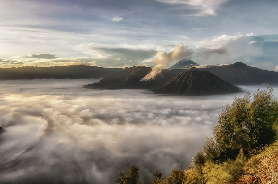 Mt. Bromo surrounded by Sea of Clouds by Adl Chai - Landscapes Mountains & Hills ( volcano, indonesia, east java, mt. bromo, volcanic craters )