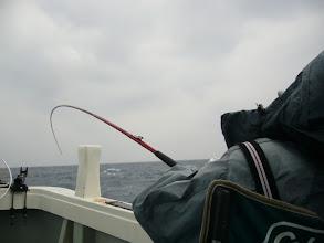 """Photo: 久しぶりのご乗船の""""オギノ先生""""! 最初から真鯛連続ヒットです!"""