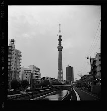 Photo: . will be open for public on may 22 2012    . shot with mamiya six folding camera on fuji acros