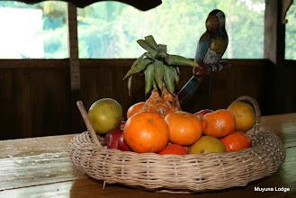 Photo: Complimentary fresh fruit all day long/ Fruta fresca de cortesía todo el día