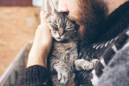 You are the Secret to Your Pet's Happiness