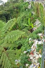 Photo: Humans=Trash