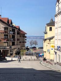 locaux professionels à Evian-les-Bains (74)