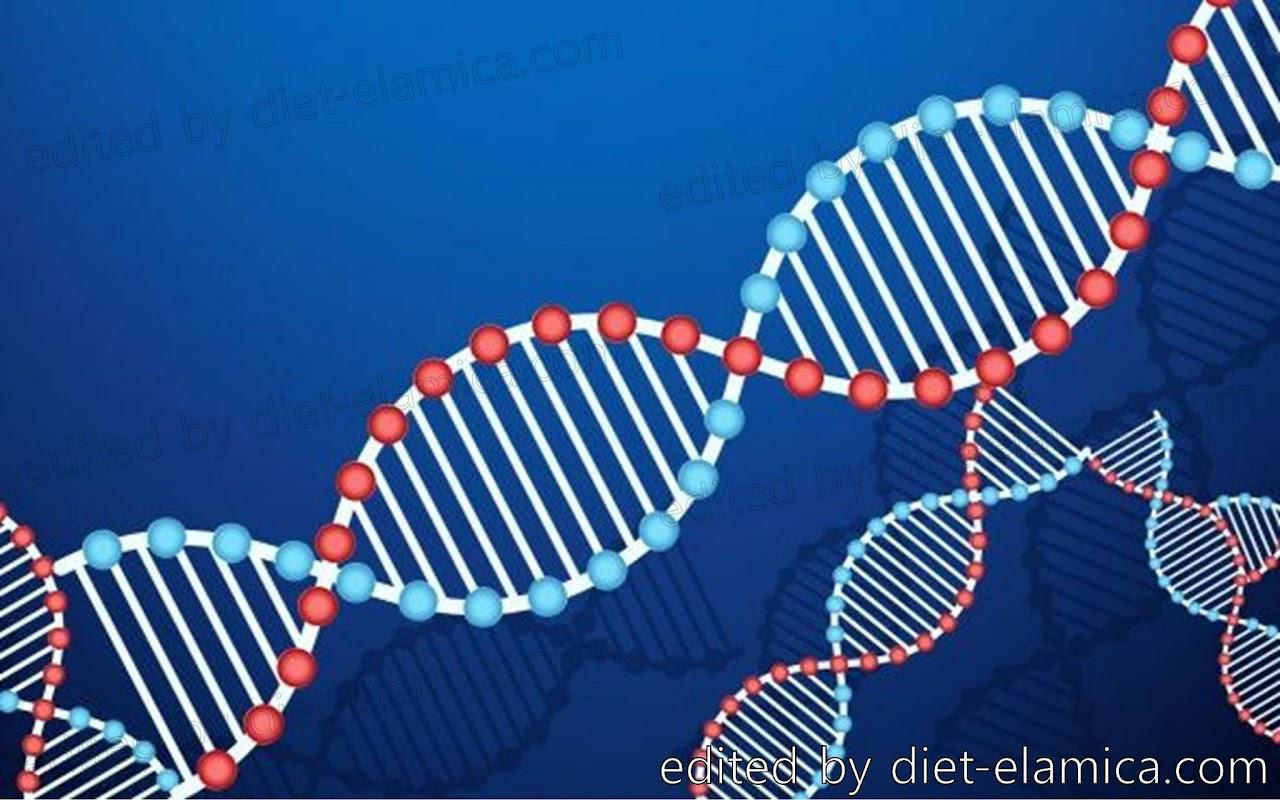 DNA二重螺旋